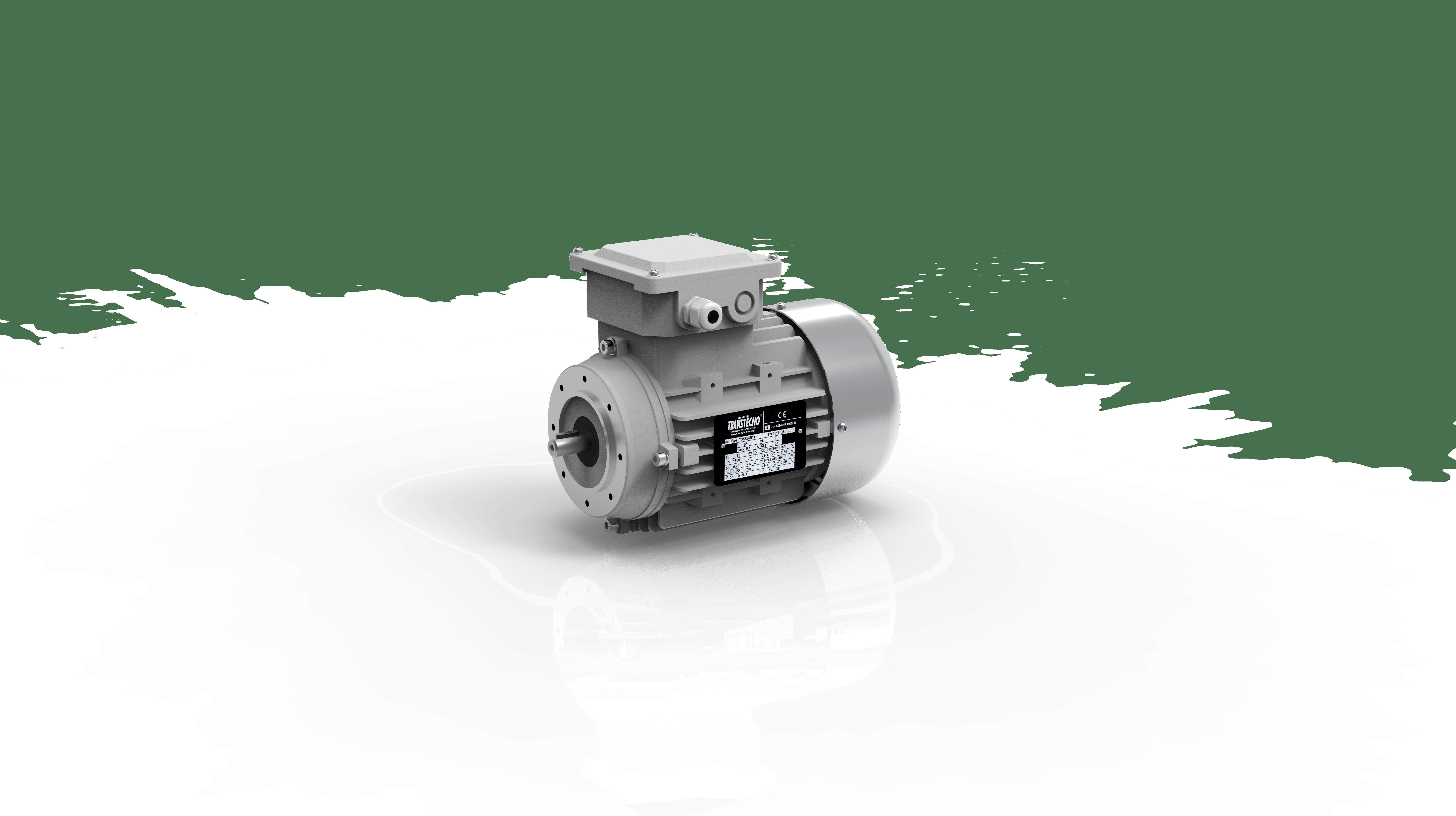 TS electric motors