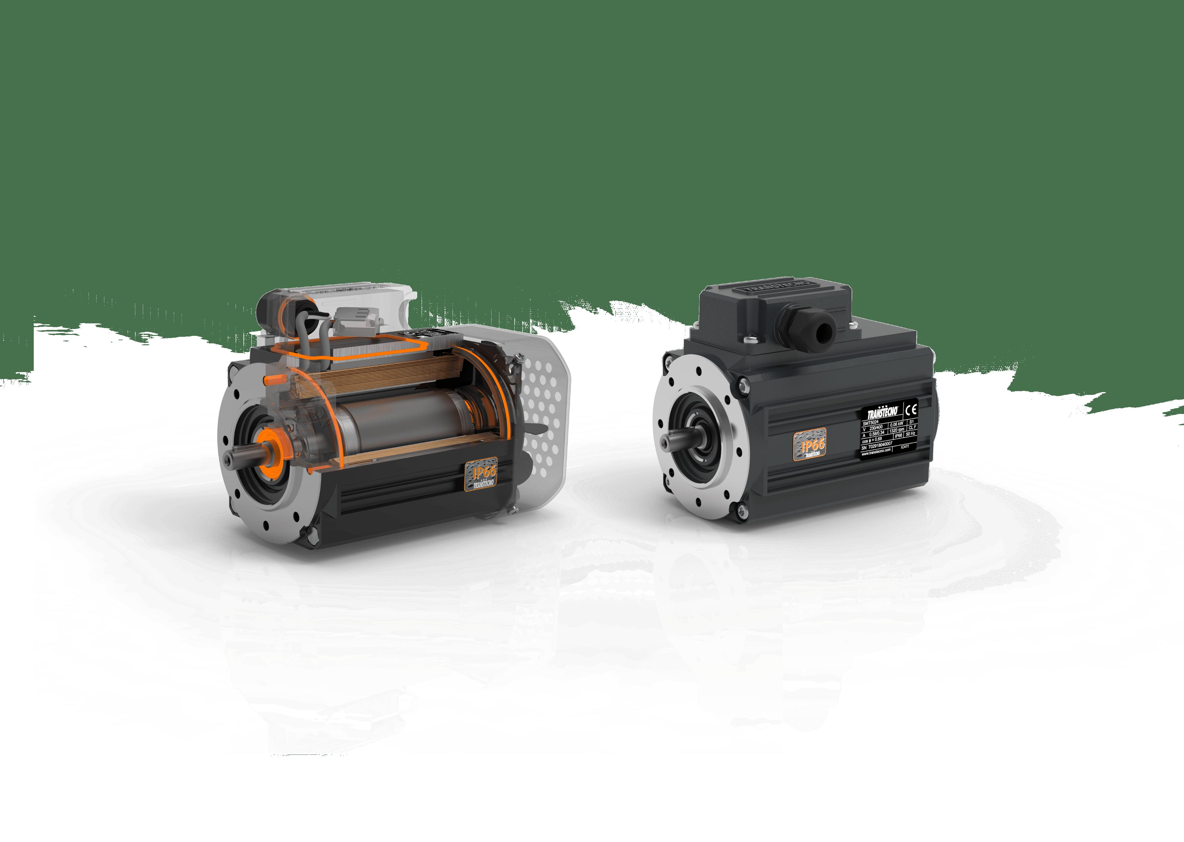 Motori elettrici CA IP66 serie SM